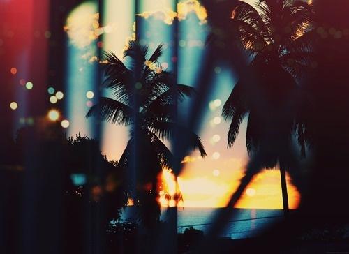 (2) Tumblr #sunset