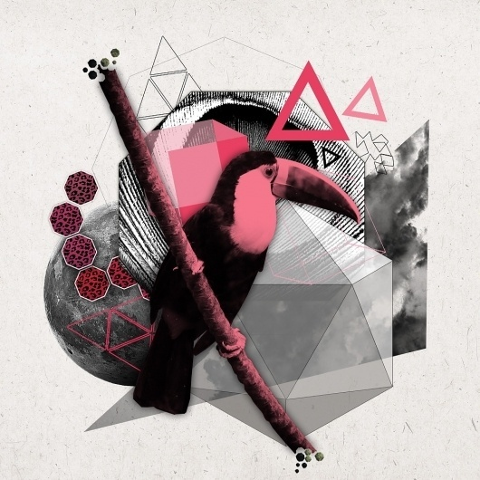 Lou Madhu #pink #digital #lou #art #madhu #collage #toucan
