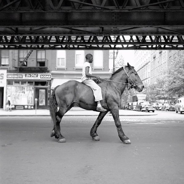 vivian maier #vivien #white #1950s #black #photography #and #maier