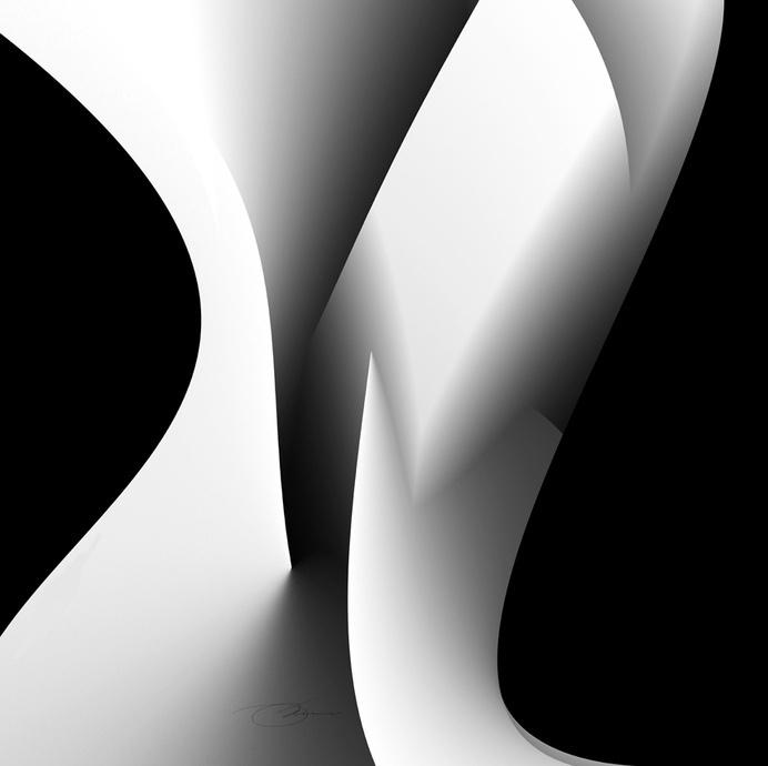Bone | Flickr - Photo Sharing! #white #grayscale #graphic #black #illustration #poster