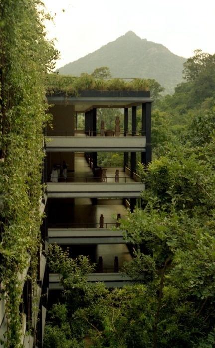 """Image Spark Image tagged """"house"""" egonomist #vines #landscapes #green"""