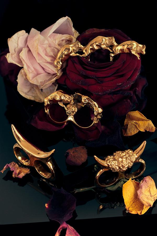 Bulls & Roses #rings #roses #jewellery #doublerings #autumn #jewelry #bulls #bull #dark