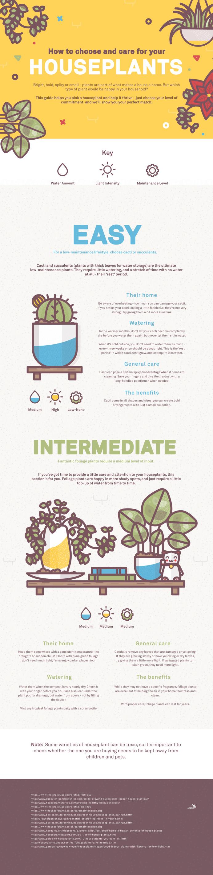Houseplants infographic illustraiton by Lucas Jubb www.lucasjubb.co.uk