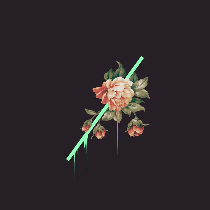 RENAUD TISSANDIÉ /DUBSKY #collage #flower #artwork #photoshop #green #melt