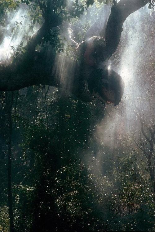 http://www.ericvalli.com/index.php?/stories/jungle-nomads/ #noamds #eric #valli #jungle