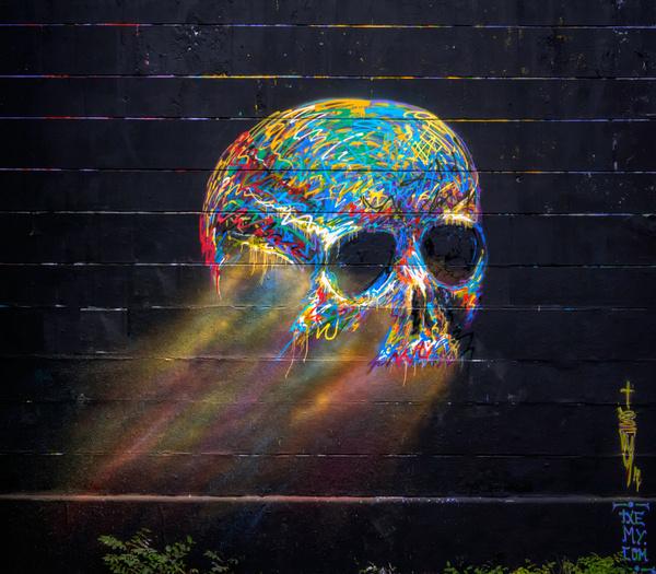 skull vienna #graffiti #paint #spray #skull