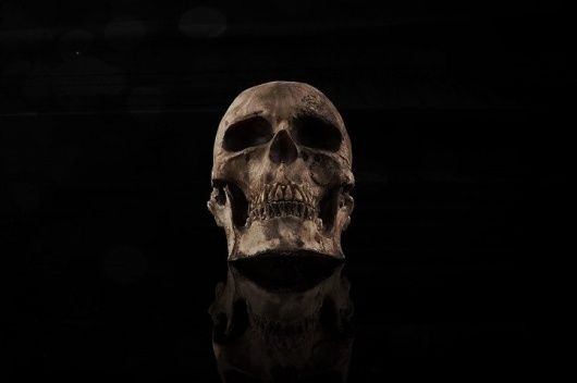 Welcome; this is destruction. #skull #dark