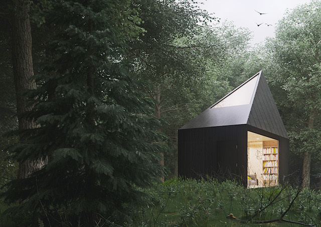 forest, cabin