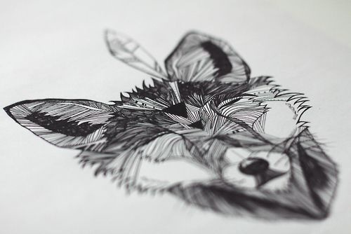 happy fox #lines #white #fox #structure #feather #black #illustration #drawing