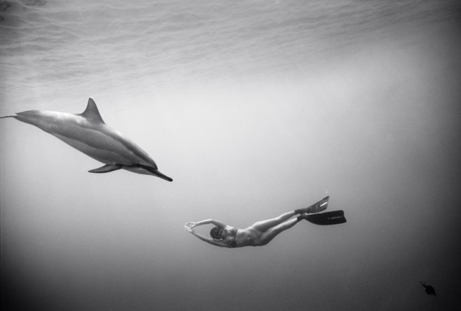 Black and White Underwater Photography by Wayne Levin #inspiration #white #black #photography #and