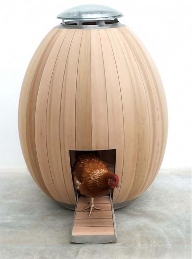 Modern chicken coop #home #architecture #chicken