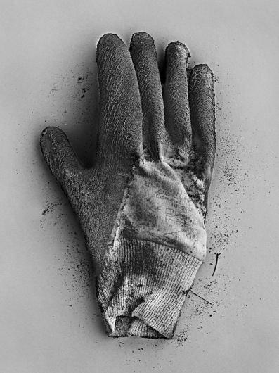 Portfolio | Special Projects « RANKIN #rubbish #photography #rankin