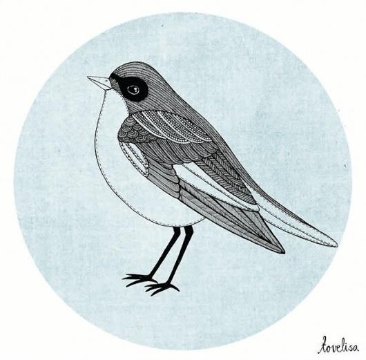 Tovelisa: Illustration #illustration #bird