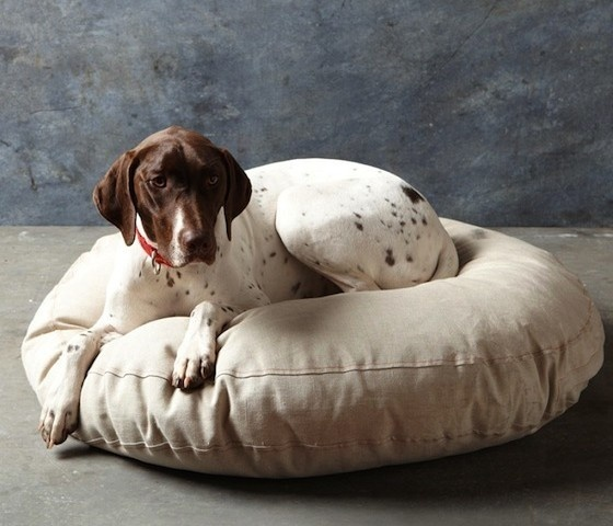 Embroidered French Linen Dog Bed #gadget