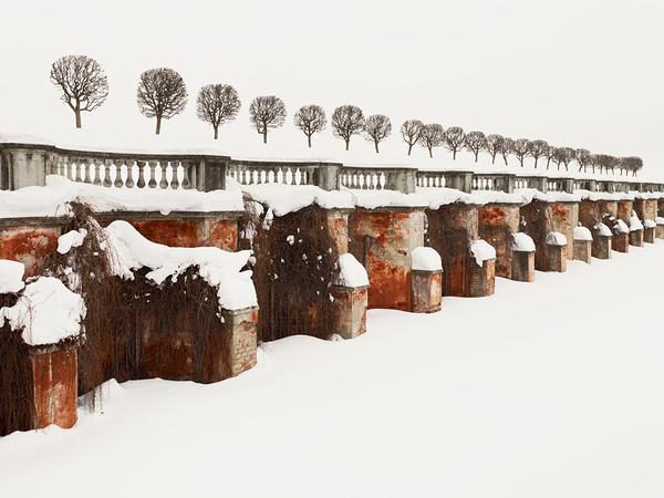 PATIENCE Color Photographs by Josef Hoflehner & Jakob Hoflehner #photo #wall #trees #winter