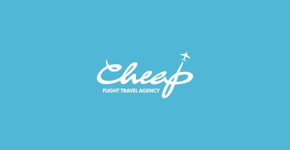 Airplane Logo Design for your Inspiration