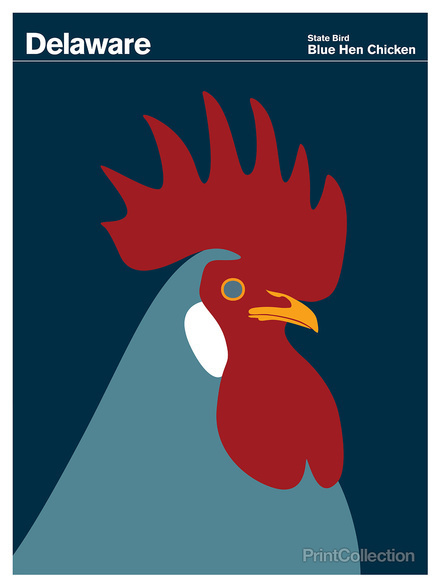 Delaware #rooster #red #chicken
