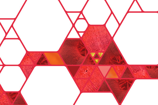 King Saud, University on Behance #polygon #pattern #building #identity #molecule