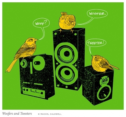 Beautiful/Decay Cult of the Creative Arts #woofer #tweeter #birds #illustration #speakers