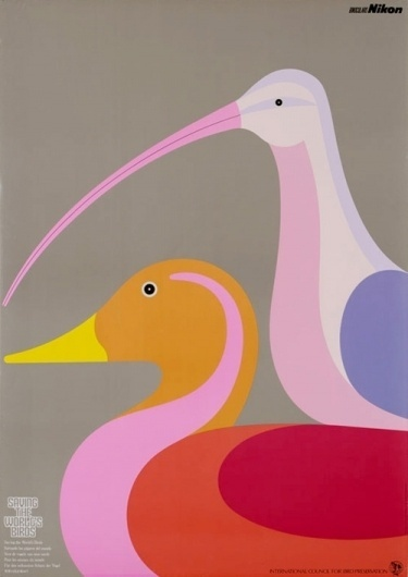 butdoesitfloat.com - Images #pink #abstract #nikon #birds