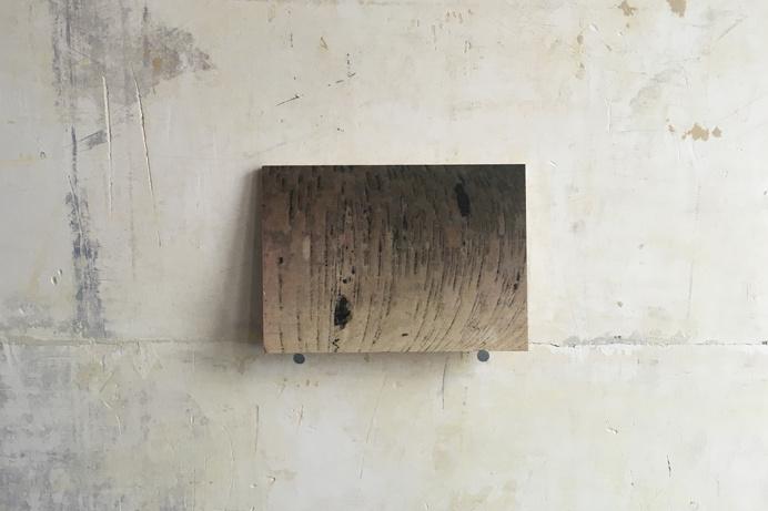 #bindermartin.com #wood # art wood #photography