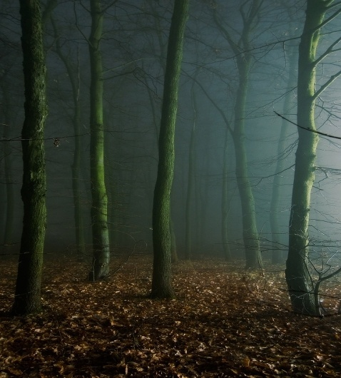 Foggy Night (Study #5), photography by Dimitri Bogachuk