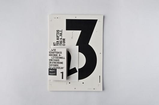 Schwarmverhalten #editorial #design #book