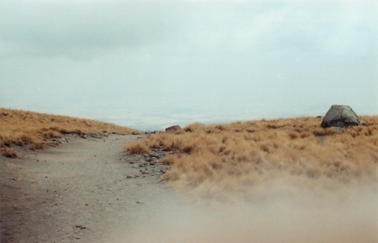 there – waking up | andrea belmont #photography #road #nature