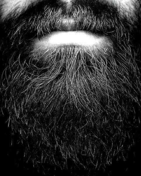 Hiding In Plain Sight #beard