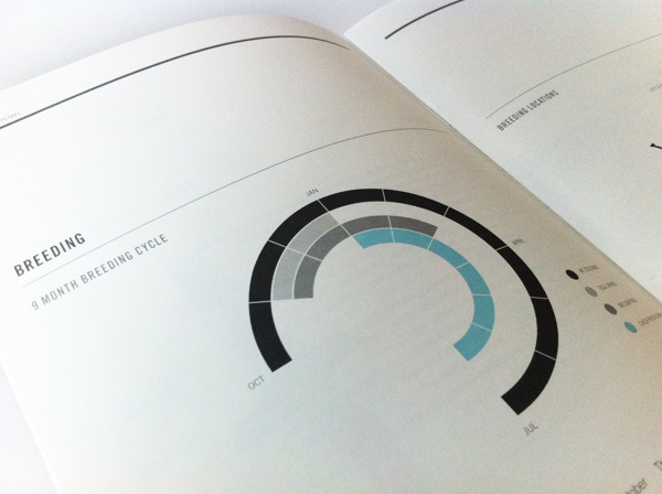 Conservation Report 2012 #information #graphics #rules #turquoise #design #annual #charcoal #torquoise #grid #info #report #blue