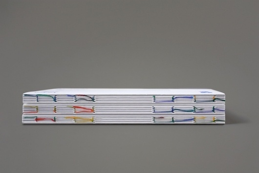 Visual Laus 2010 #binding #white #color #spines #chinese