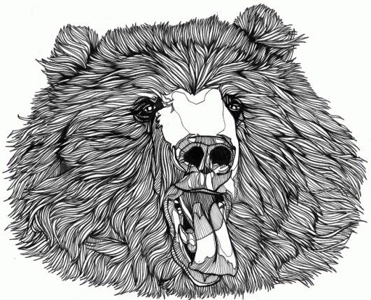 Luke Dixon Artist #bears #illustration #dukelixon