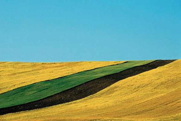 Franco Fontana #inspiration #photography #landscape