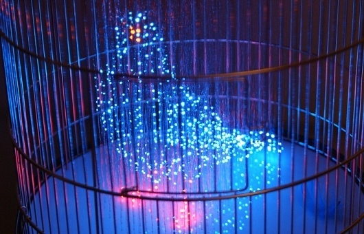 MAKOTO TOJIKI | LUST NATION #lust #nation #design #in #bird #cage #art #artist