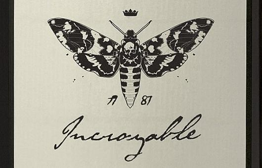 Incroyable on Branding Served #logo #illustration