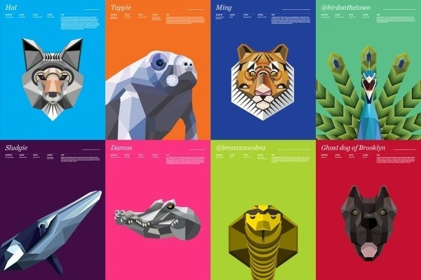 Animal Infographic – Fubiz™ #color #vecto #animals
