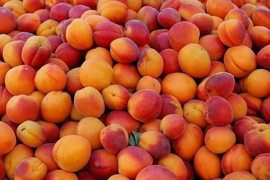 3757546669_edd106fb55_z.jpg 640×428 pixels #peaches