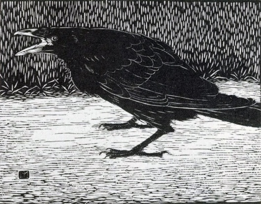 And suns grow meek, and the meek suns grow brief, and the year smiles... - but does it float #drawing #crow