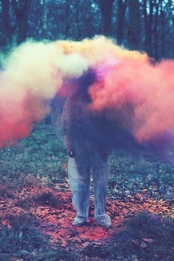 louis_05.jpg (Image JPEG, 720x1076 pixels) #forest #photography #colors