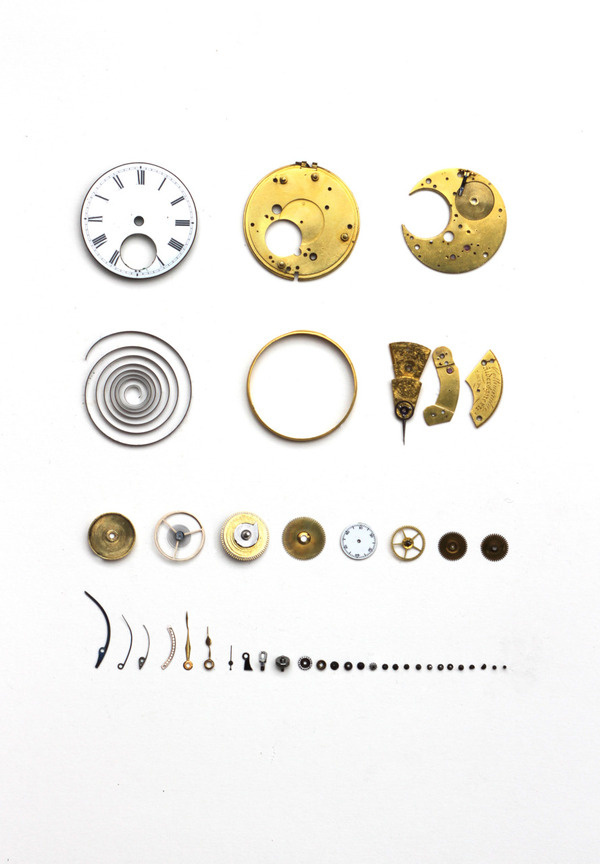 SUBMISSION:scurtisillustration.tumblr.com #neatly #organised #mechanics #watch #clock #things