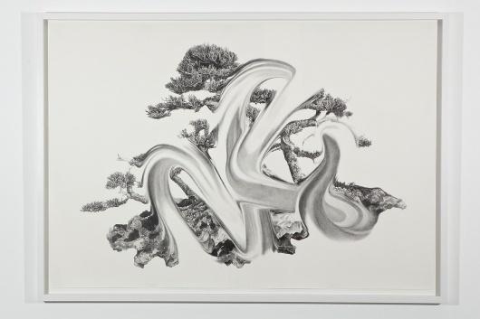 Photo-Joshua-White-2010-6849.jpg (1200×800) #pencil #art #bonsai