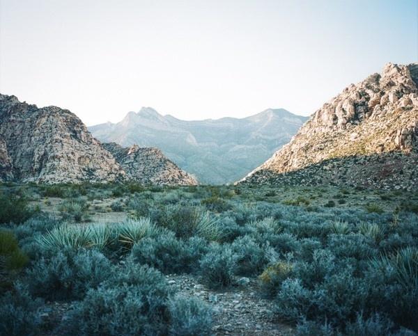 RedRock 1 #terry #barentsen #mountains #desert