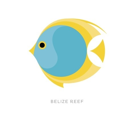 Belize | Studio MPLS