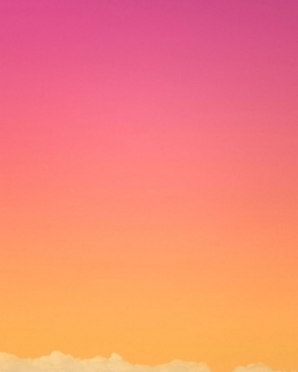 The Fox Is Black #sunset