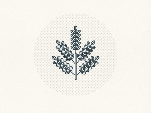 Tim Boelaars #icon #logo #branding