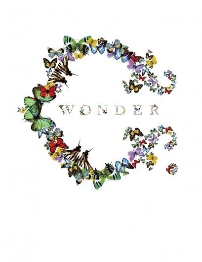 CWonder - annie-willcox.com #logo