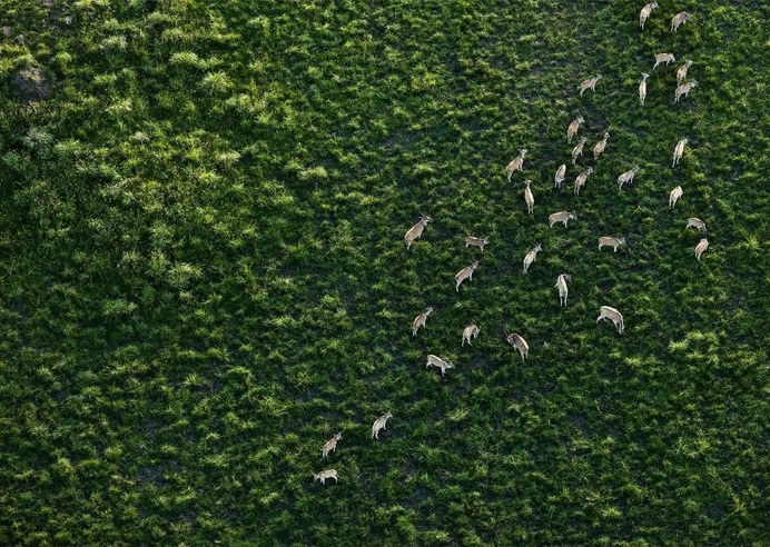 South Africa From Above: Abstract and Minimalist Aerial Photography by Zack Seckler