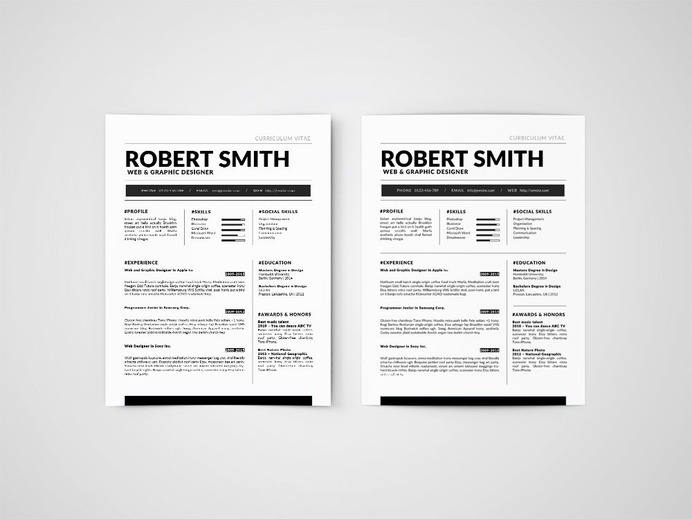 Free Standard Resume Template Template in Word Format