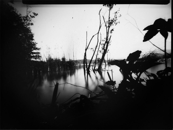 Put Down the iPhone and Pickup an ONDU Wooden Pinhole Camera #white #water #blackwhite #swamp #black #nature #and