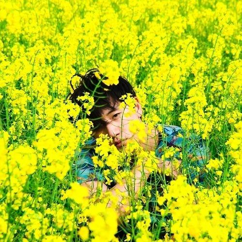 Canola, Humming Bird, Boy. #boy #yellow #photography #flower #canola